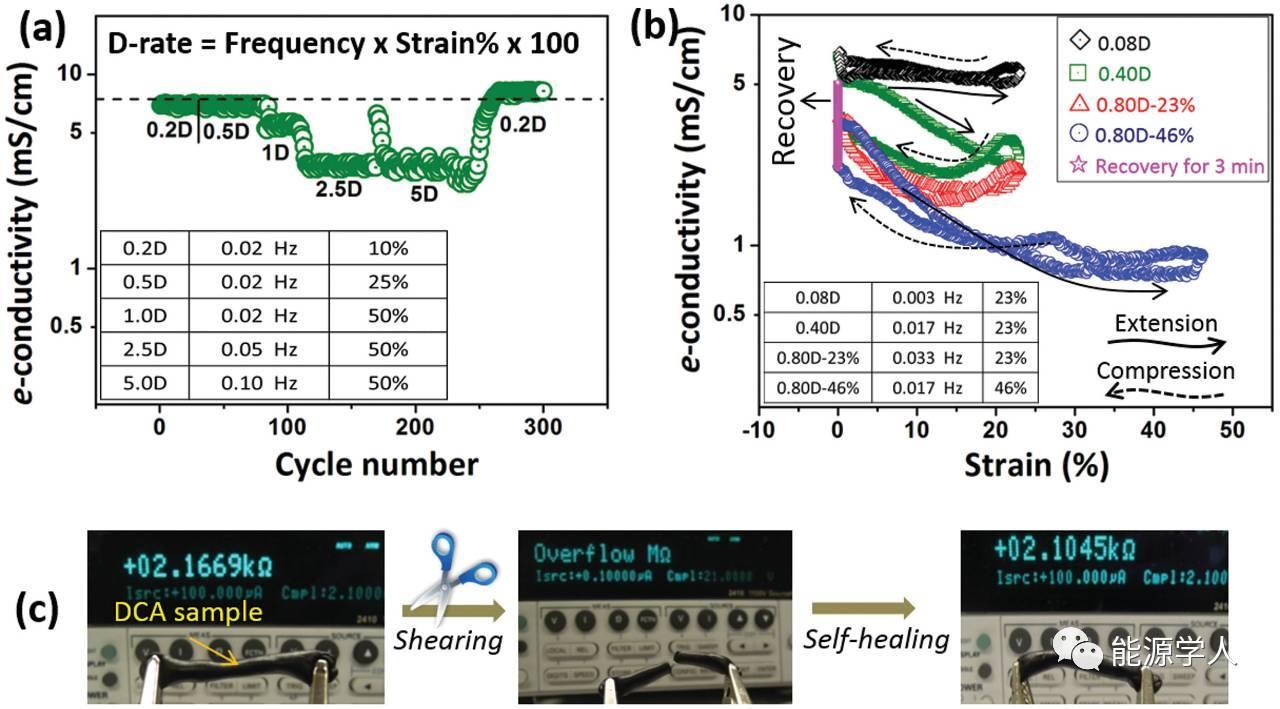 "Adv. Energy Mater.|一种变革性的改变电极中锂离子和电子传输路径的""胶"""