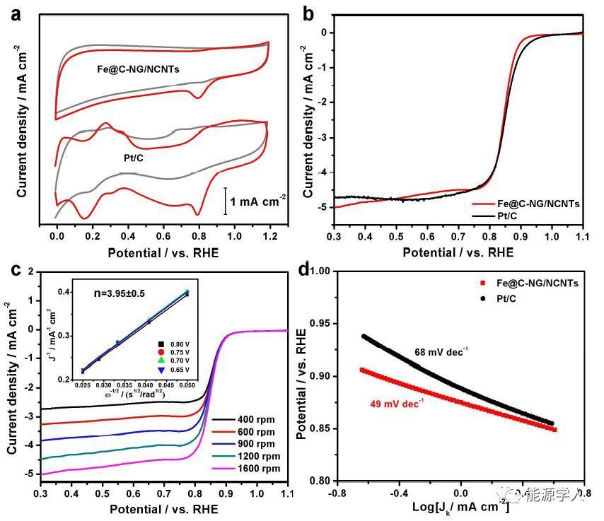"""""""结构-活性位""""双功能氧电极催化剂及其可逆锌-空气电池"""