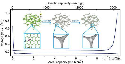 用于高性能锂金属负极的轻质氮掺杂碳泡沫诱导均匀的锂成核/生长