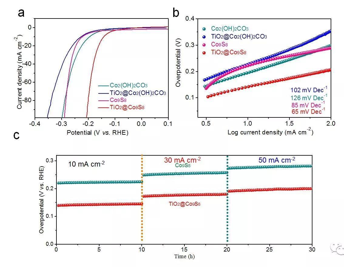 用于高效产氧/氢的中空TiO2@Co9S8核-分支阵列双功能电催化剂