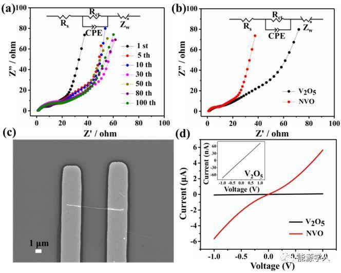 """预嵌入钠离子的""""支柱作用"""",实现高容量长循环的水系锌离子电池"""