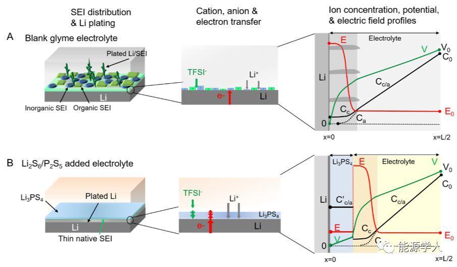Joule荐读:滑铁卢大学Linda Nazar实验室——原位生成固体电解质层防止锂金属枝晶生长
