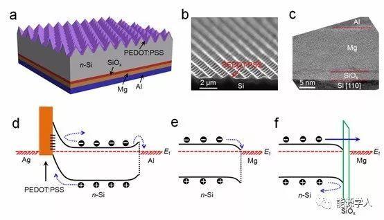 同步实现界面钝化和能带调控的SiOx/Mg结构双重功能电子选择性传输层