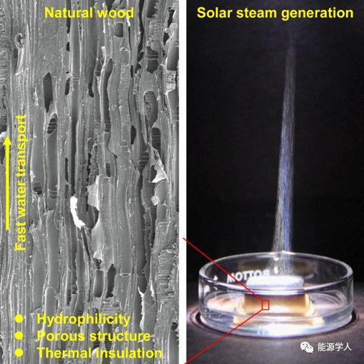胡良斌Joule:天然木质材料碳化实现高效水净化