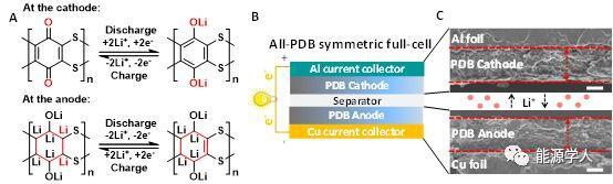 可用于电池正极和负极的高性能聚合物助力于全有机塑料电池的研究