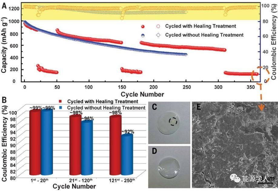Science:锂金属自愈合机制