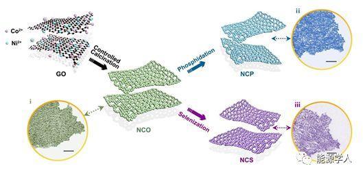 Ni-Co-A(A=P, Se, O)纳米片的双调控:通过阴离子取代和控孔工程实现高效析氢电催化