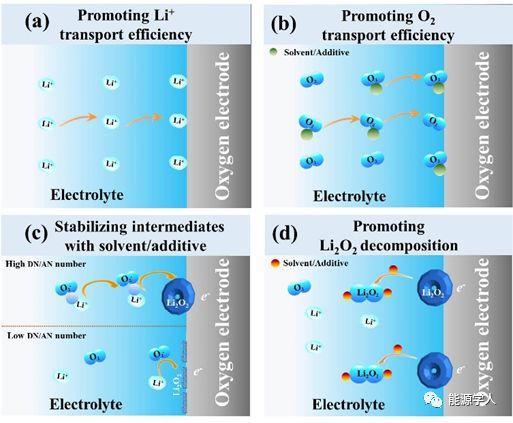 Chem. Soc. Rev. 综述:有机体系锂氧电池中功能和稳定性导向的材料设计与合成