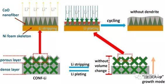 复旦大学周永宁EnergyStorageMaterials:CoO纳米纤维装饰泡沫镍作为可抑制锂枝晶的高能锂金属电池宿主骨架