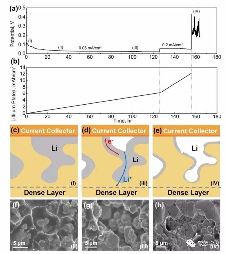 马里兰大学帕克分校胡良兵Nano Letters:用于锂金属阳极的三维固态混合电子导电框架