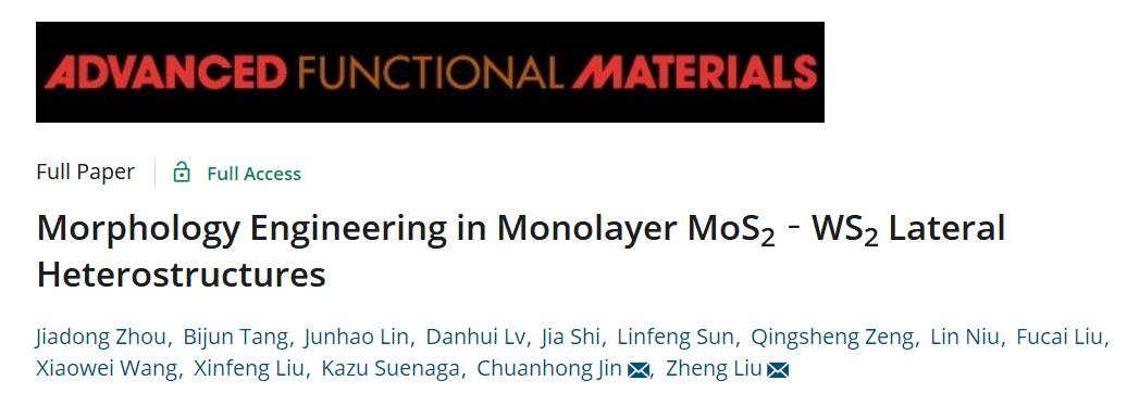 南洋理工大学刘政AFM:单层MoS2-WS2横向异质结构的形态调控