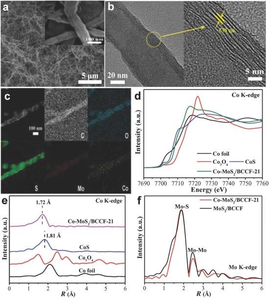 中科院固体物理所AM:钴共价掺杂MoS2诱导水分解的双功能性