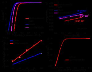 二硫化钼纳米筛光/电催化产氢新进展