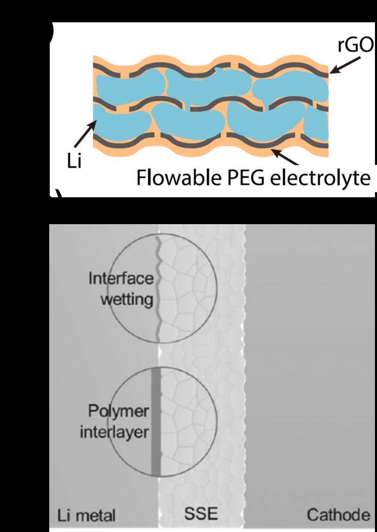 金属锂负极中界面对离子和电子传输行为的要求