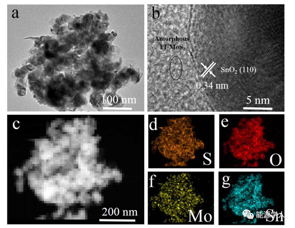 哈工大ACS Energy Lett.:理性设计多级结构SnO2/1T-MoS2纳米阵列电极实现超长寿命的Li-S电池