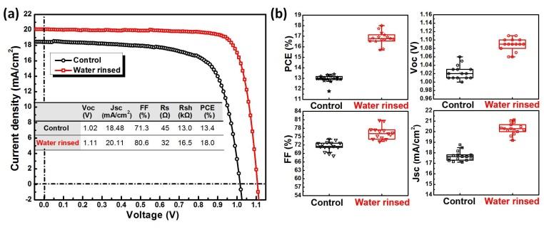 自组织PEDOT:PSS分子薄膜提高钙钛矿的空穴提取能力和空气稳定性