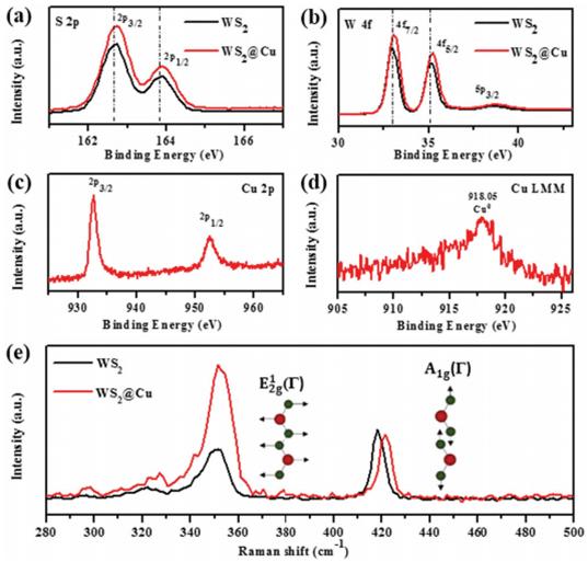 Adv. Funct. Mater. : 近红外激发等离子共振注入热电子实现全光谱太阳能光催化制氢