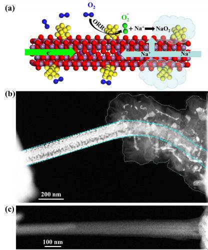 燕山大学Energy Storage Materials: 基于Au包覆的MnO2纳米线空气阴极的固态Na-O2纳米电池的电催化原位成像