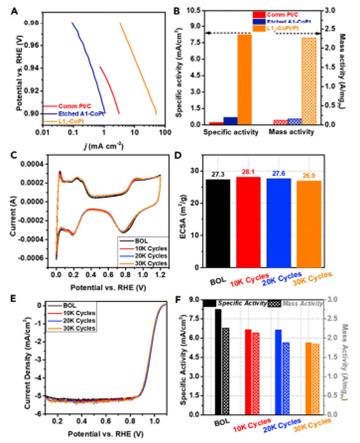 硬磁L10-CoPt纳米合金催化剂实现燃料电池高效氧还原催化