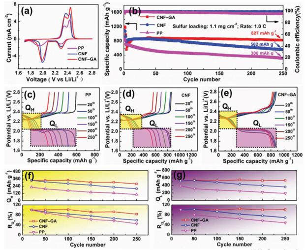 天津大学许运华教授团队Advanced Materials:聚合物屏蔽层阻止锂硫电池中多硫化物的穿梭