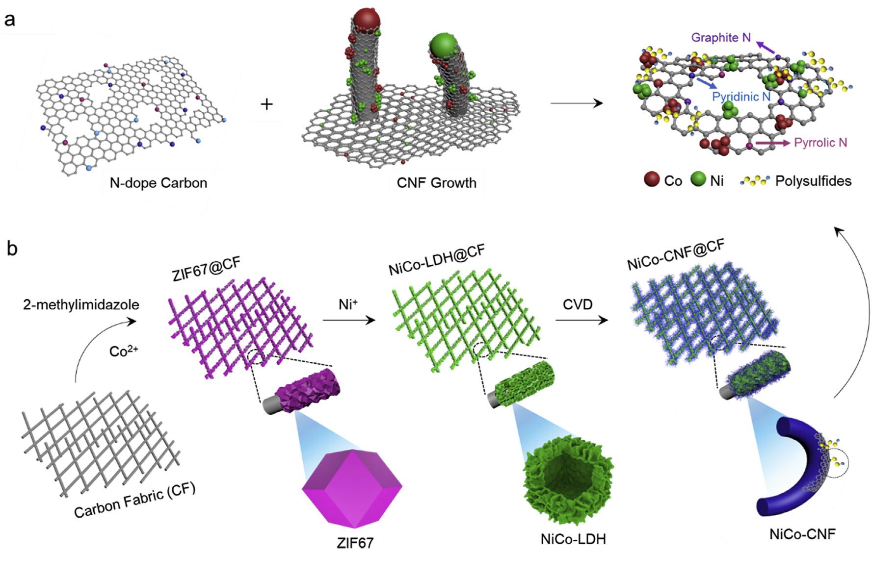河北工业大学:Nano Energy:碳纤维上竖直生长Ni Co N共掺杂多功能碳纳米纤维触须作为高性能锂硫电池的夹层材料