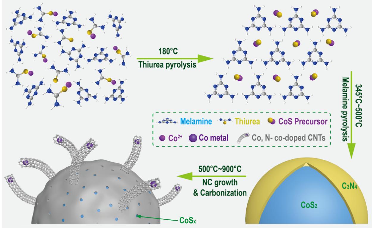 南京工业大学AFM:自催化合成CoSx-C-CNT双功能三维氧电极催化剂用于可充锌空气电池
