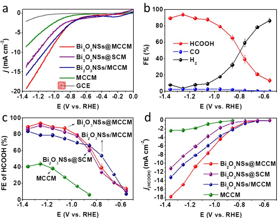 【能源催化】楼雄文Angew:多通道碳原位生长Bi2O3纳米片高效催化CO2制甲酸