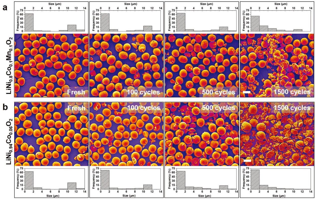 锂离子电池中超高镍正极的相间和结构演变