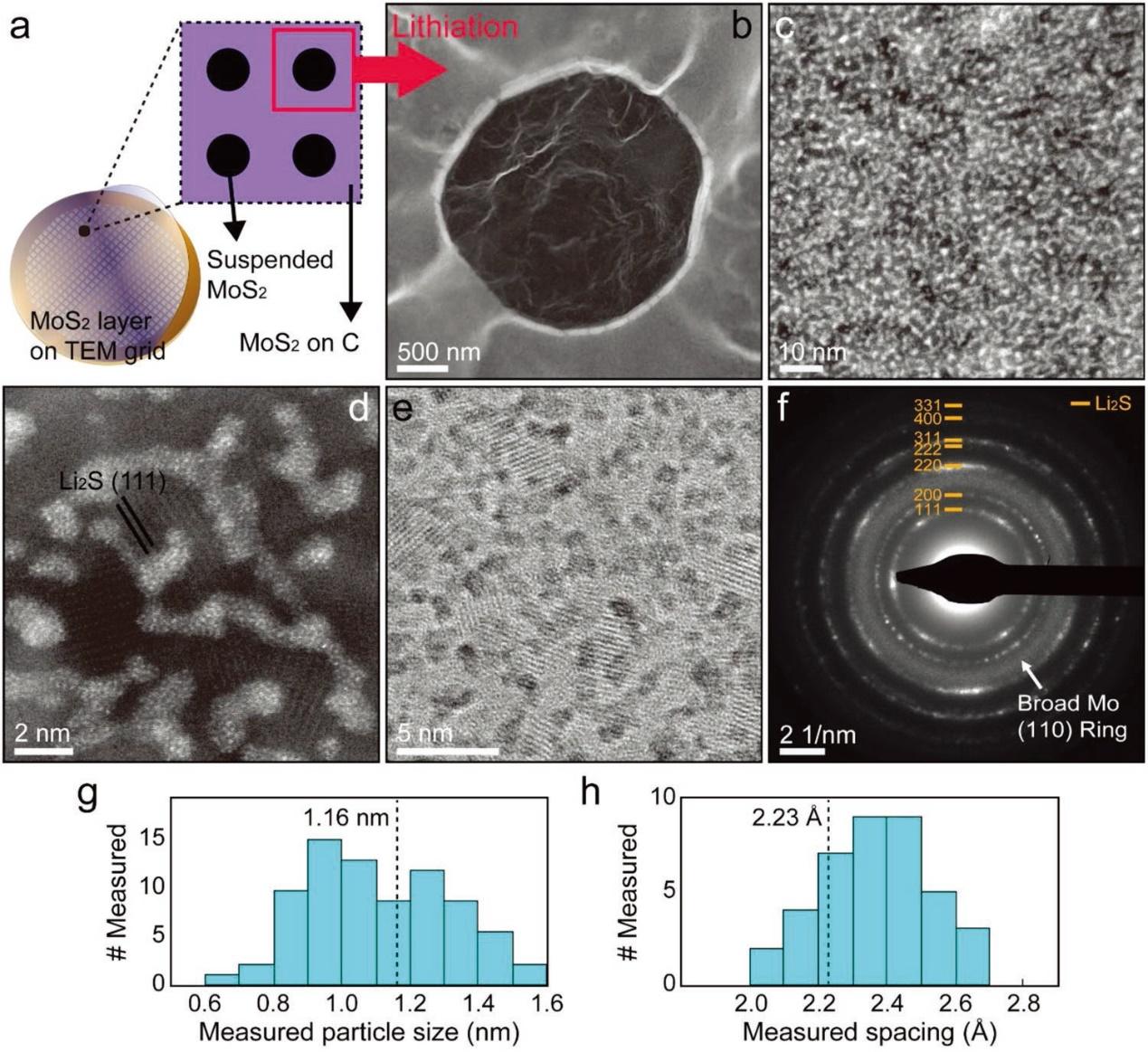 冷冻电镜研究单层MoS2的电化学锂化过程