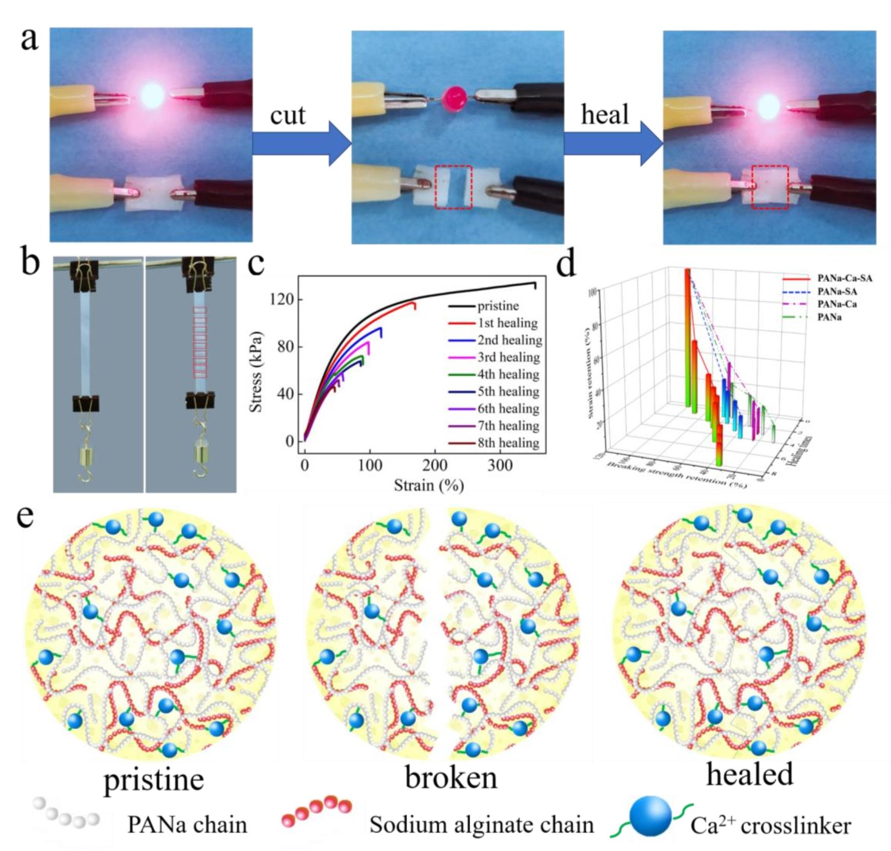 哈工大黄燕EnSM: 具有宏微观本征自愈合的水系锂离子纱线电池