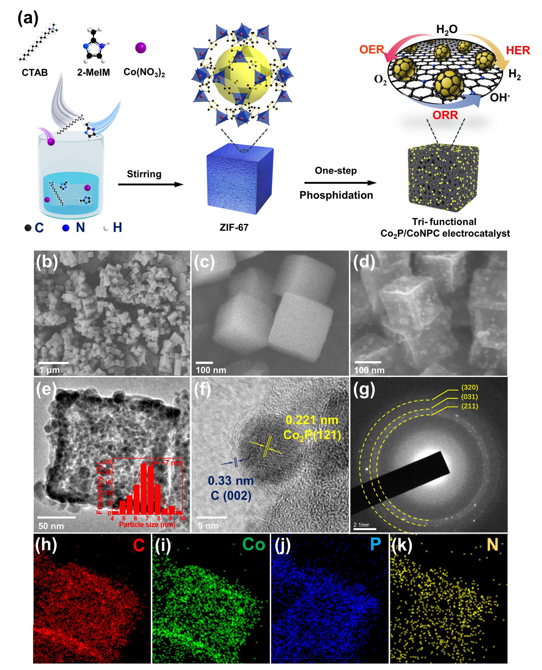 AM:一步磷化金属有机骨架构建高效炭载磷化钴纳米颗粒三功能电催化剂