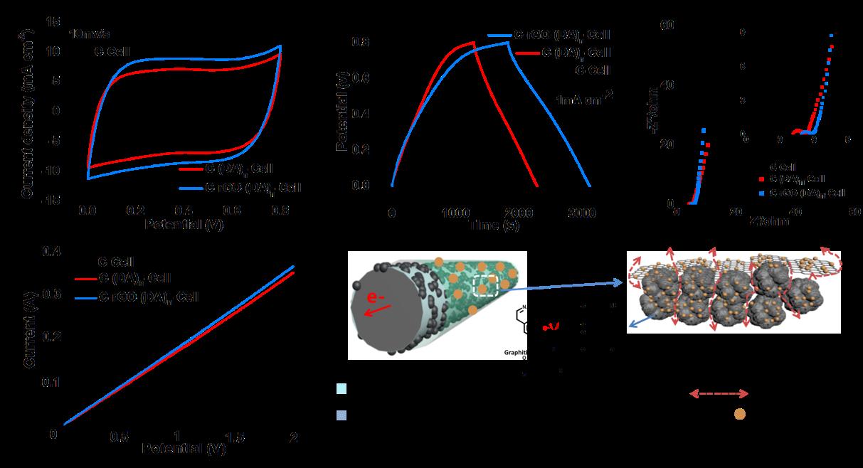 华南理工王小慧教授EnSM:多功能界面设计助力高性能纤维素基柔性超级电容器