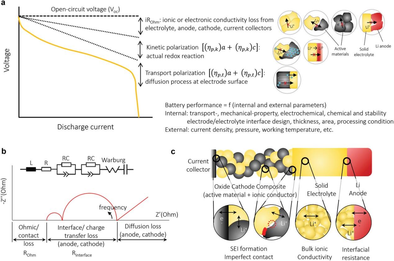 MIT Jennifer L. M. Rupp教授:综述固态锂金属电池的挑战与展望