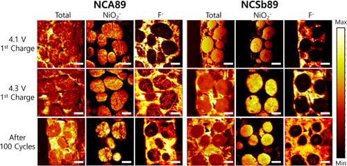 ACS Nano:花瓣状晶粒排列提高富镍层状氧化物正极稳定性