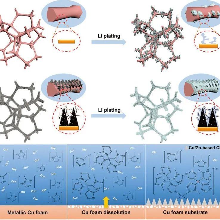 四川长虹/电子科大:一种提升金属锂负极循环稳定性的策略