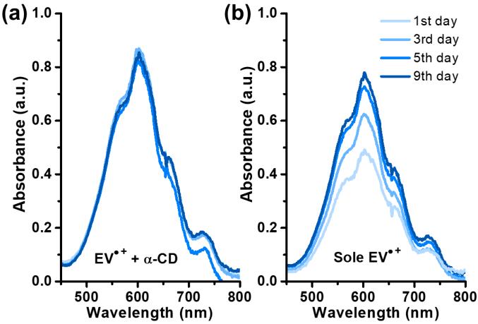 Molecular Spectator策略提高水系液流电池紫精自由基稳定性