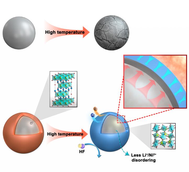 通过负热膨胀纳米晶壳包覆增强富镍NCM622正极材料的结构稳定性