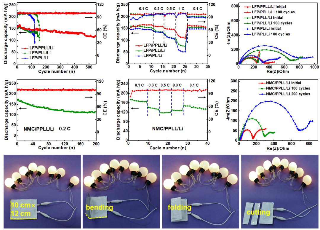 动态自适应固态界面延长柔性固态锂金属电池的循环周期