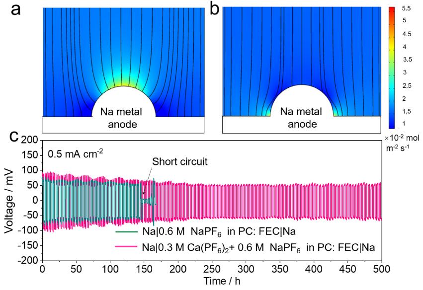 多离子策略实现高性能钙/钠硫混合电池