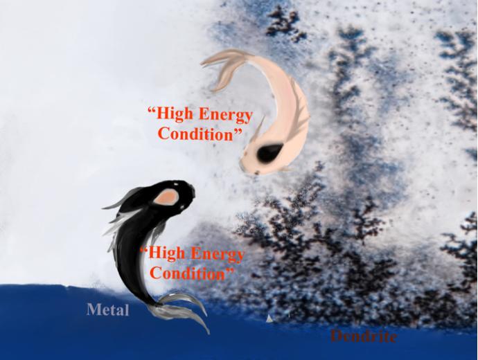 """涂江平课题组:高能条件""""下碱金属电极的自修复特性"""