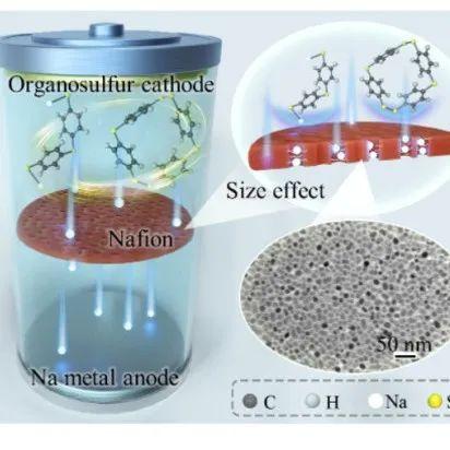哈工程闫俊教授:采用通用的界面自组装方法制备MXene基复合材料来提高储锂储钠动力学