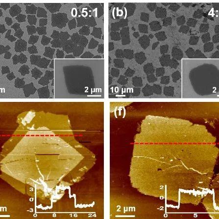 基于多离子嵌入机理的高性能SWCNT/Al水系铝离子电池